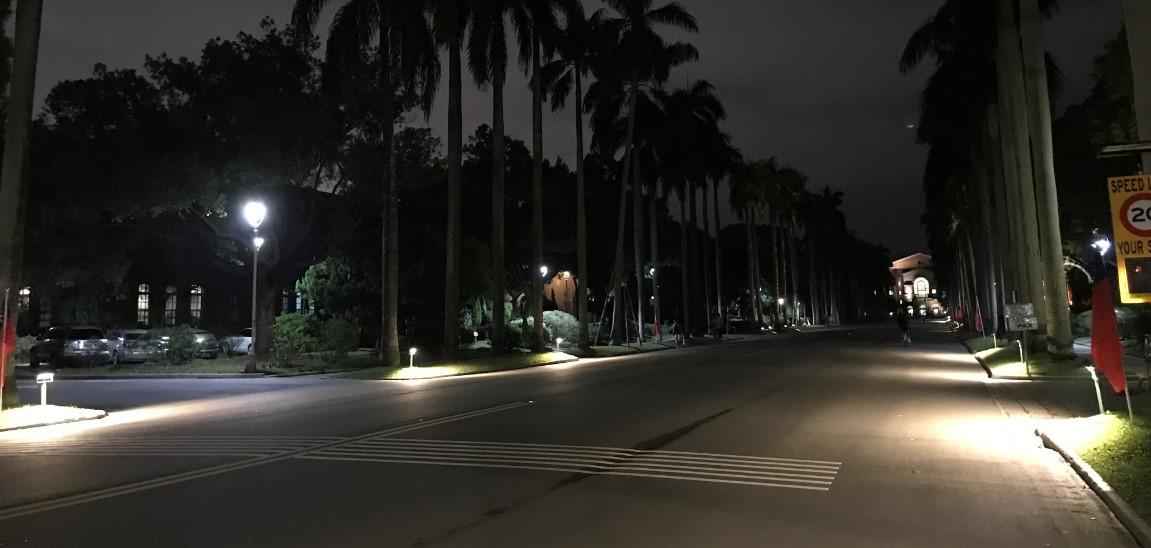 2019年椰林大道增加投射燈